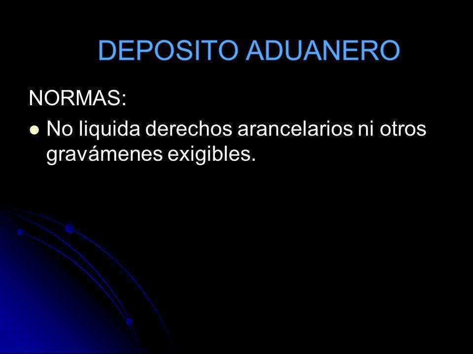 DEPOSITO ADUANERO NORMAS: