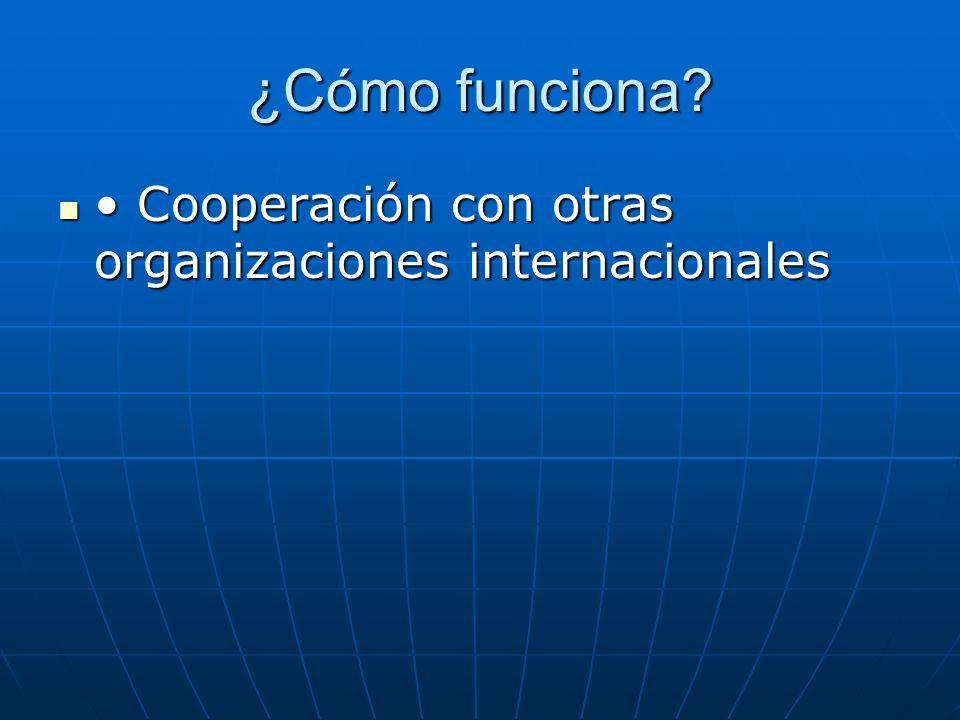 ¿Cómo funciona • Cooperación con otras organizaciones internacionales
