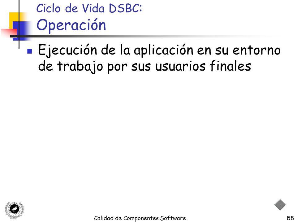 Ciclo de Vida DSBC: Operación