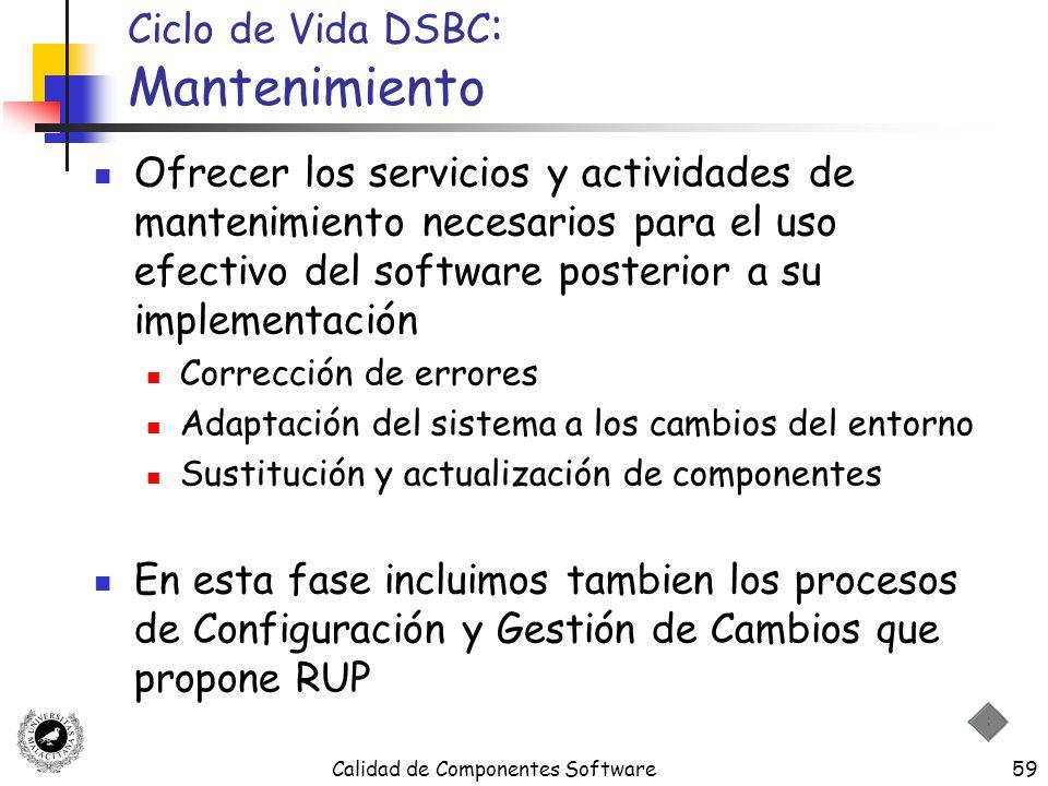 Ciclo de Vida DSBC: Mantenimiento