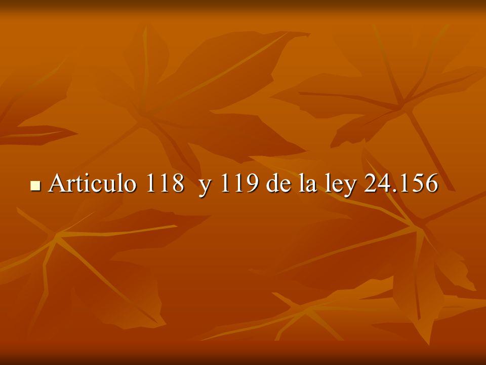 Articulo 118 y 119 de la ley 24.156