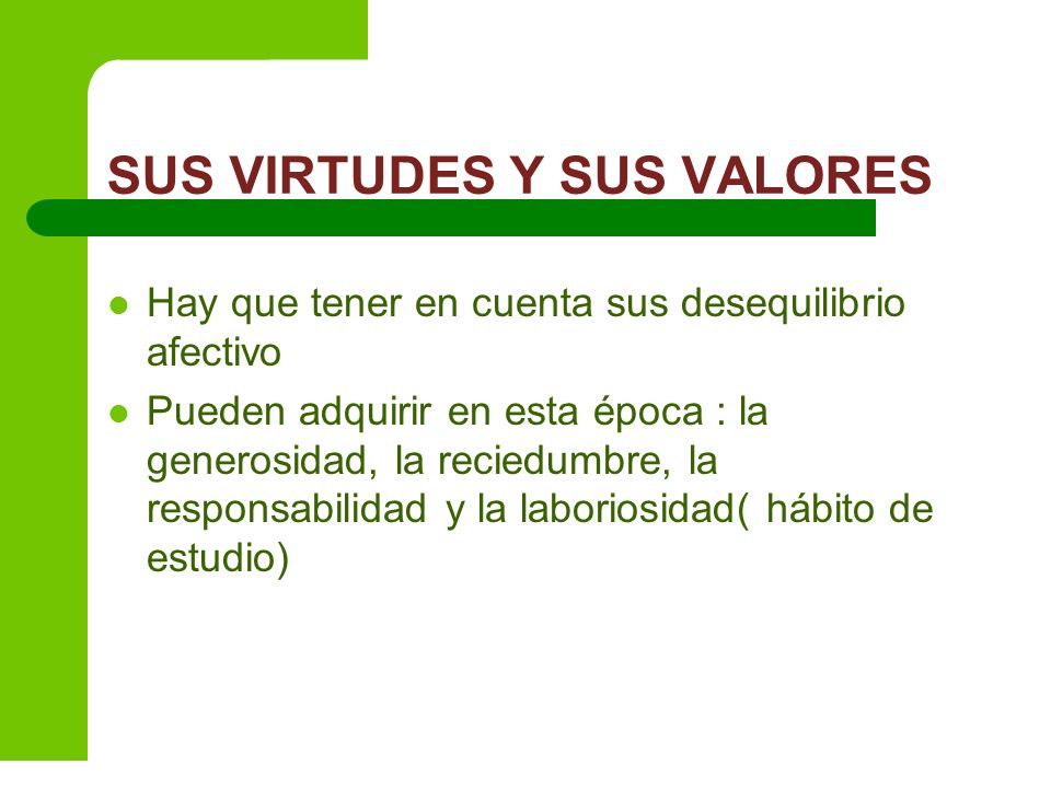 SUS VIRTUDES Y SUS VALORES
