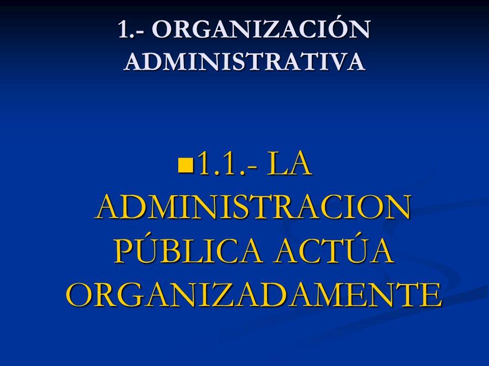 1.- ORGANIZACIÓN ADMINISTRATIVA
