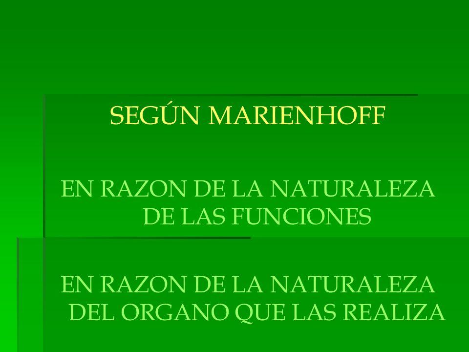 SEGÚN MARIENHOFF EN RAZON DE LA NATURALEZA DE LAS FUNCIONES