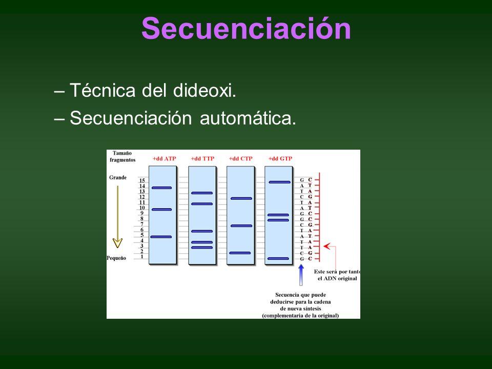 Secuenciación Técnica del dideoxi. Secuenciación automática.