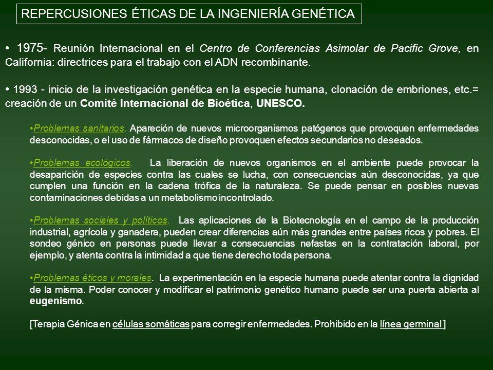 REPERCUSIONES ÉTICAS DE LA INGENIERÍA GENÉTICA
