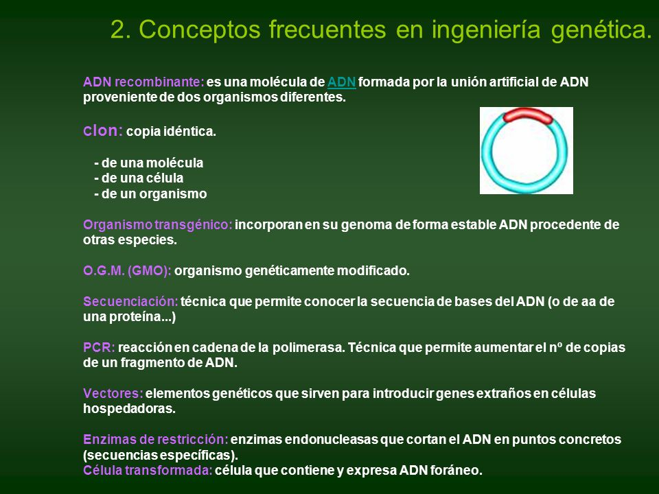 2. Conceptos frecuentes en ingeniería genética.