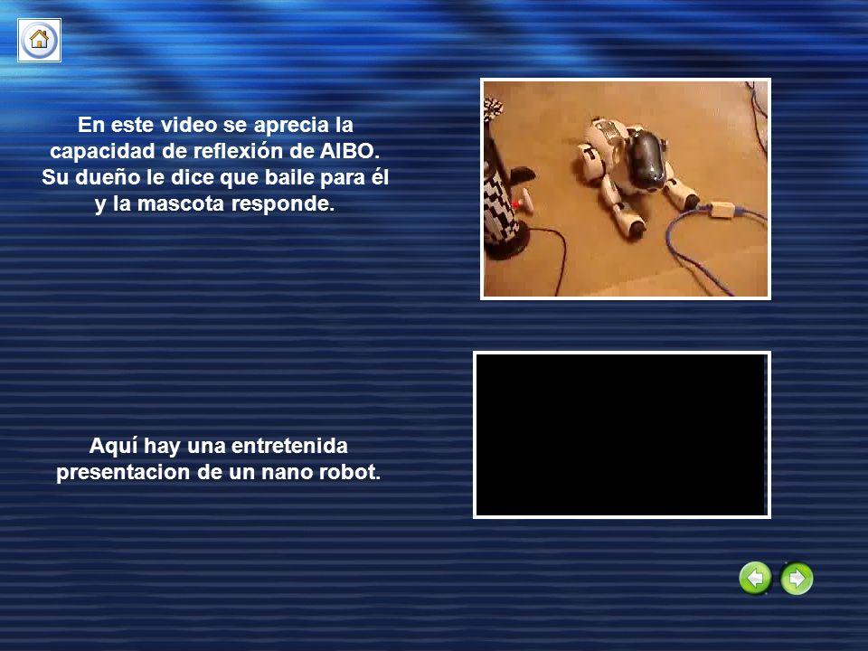 Aquí hay una entretenida presentacion de un nano robot.