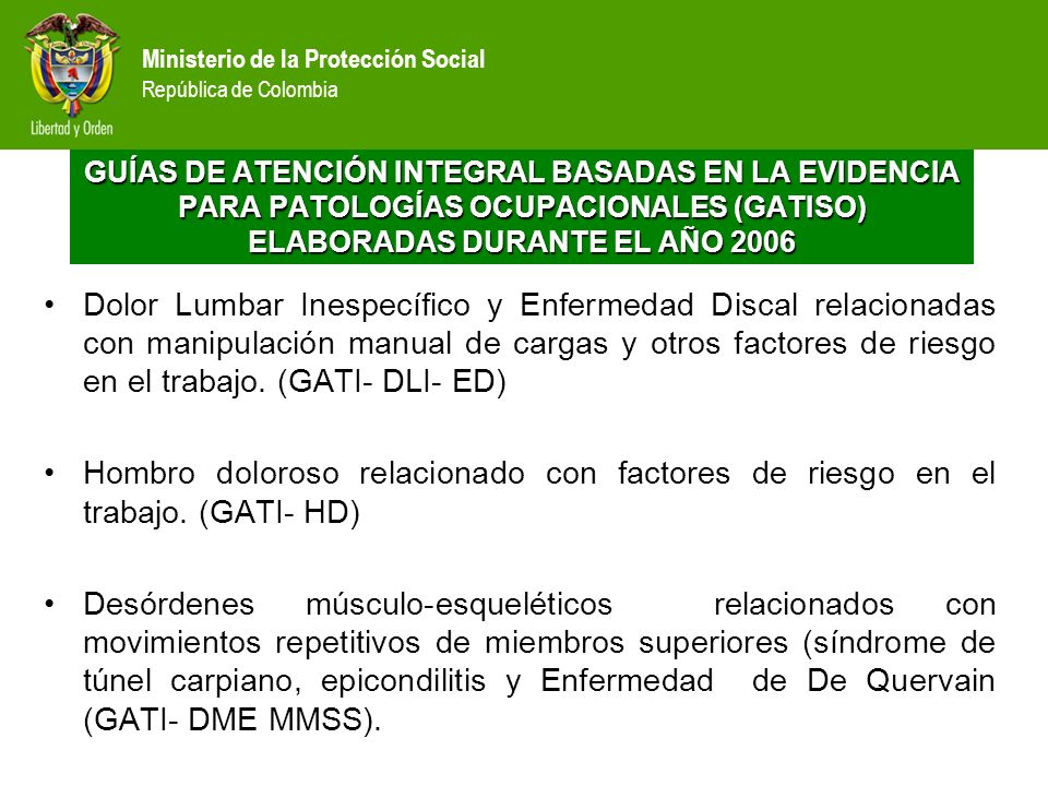 GUÍAS DE ATENCIÓN INTEGRAL BASADAS EN LA EVIDENCIA PARA PATOLOGÍAS OCUPACIONALES (GATISO) ELABORADAS DURANTE EL AÑO 2006