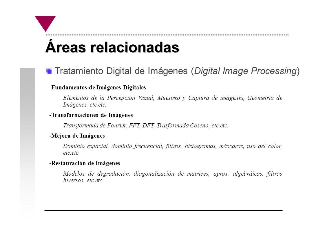Áreas relacionadas Tratamiento Digital de Imágenes (Digital Image Processing) Fundamentos de Imágenes Digitales.