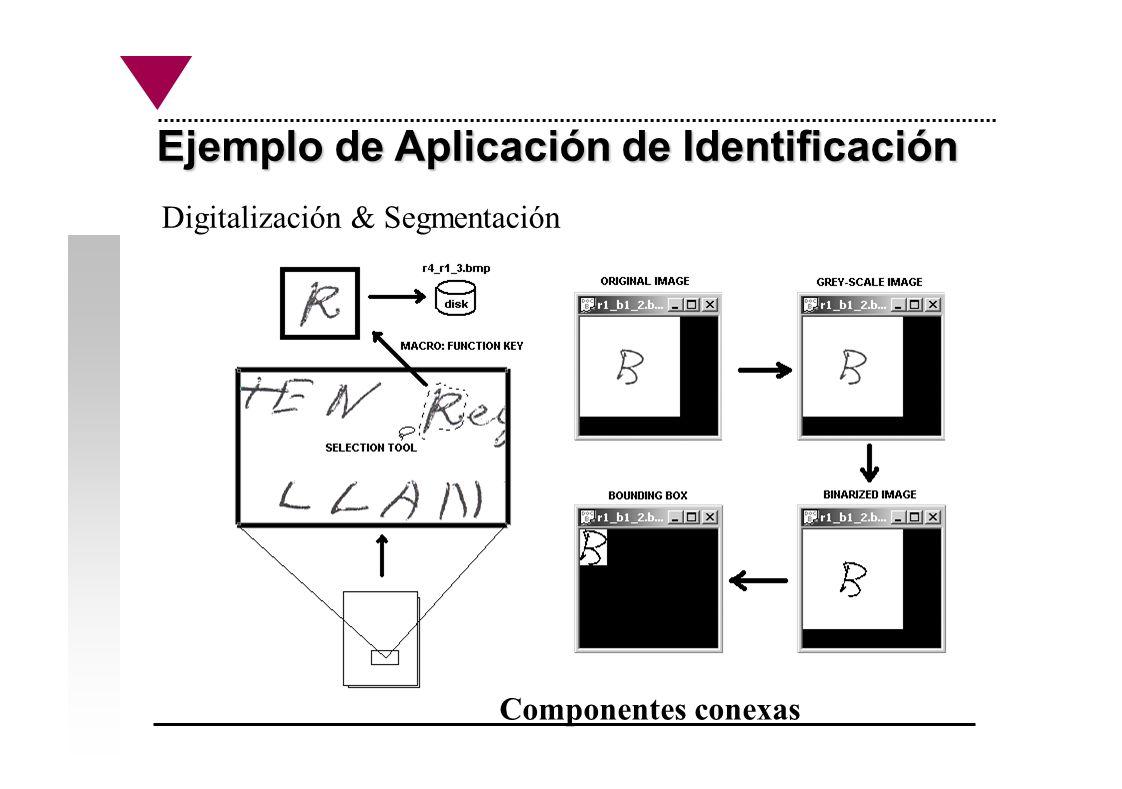 Ejemplo de Aplicación de Identificación