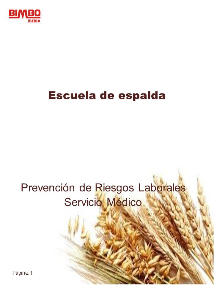 Prevención de Riesgos Laborales Servicio Médico