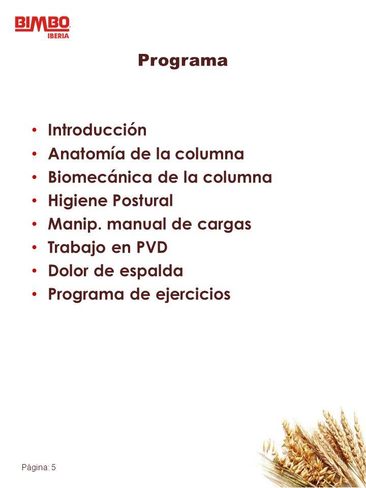 Programa Introducción Anatomía de la columna Biomecánica de la columna