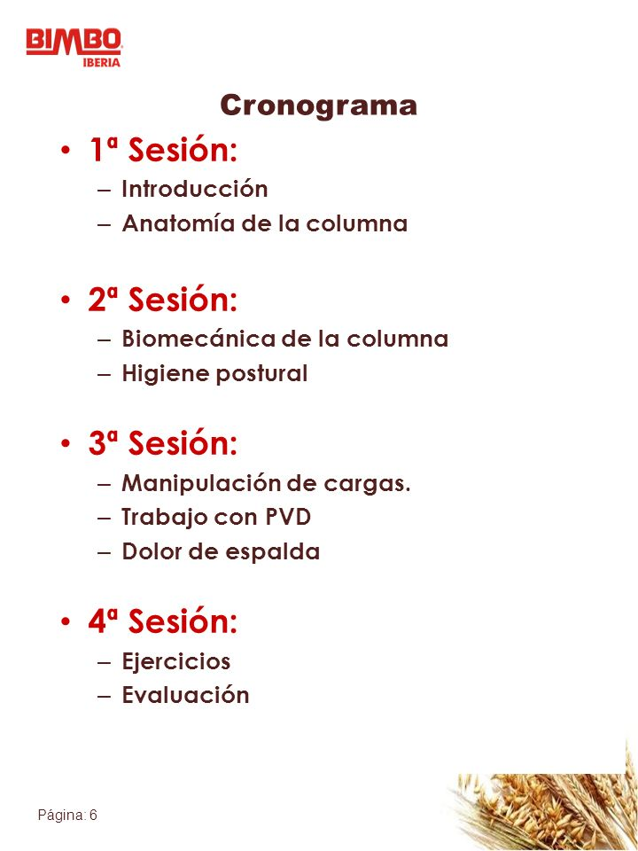 1ª Sesión: 2ª Sesión: 3ª Sesión: 4ª Sesión: Cronograma Introducción
