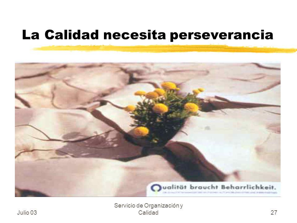 La Calidad necesita perseverancia