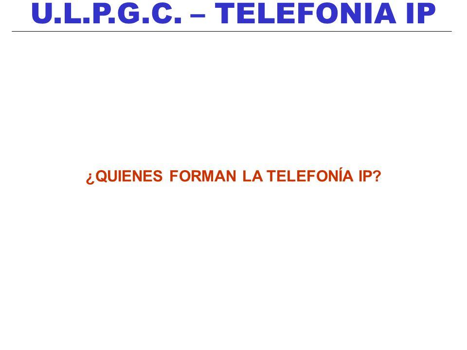 ¿QUIENES FORMAN LA TELEFONÍA IP