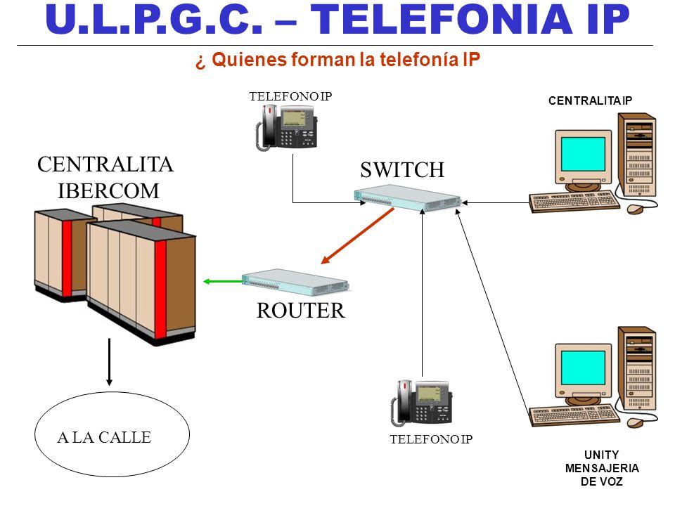 ¿ Quienes forman la telefonía IP