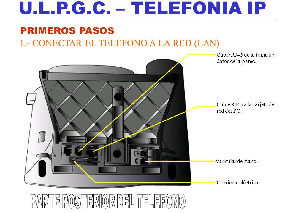 PARTE POSTERIOR DEL TELEFONO