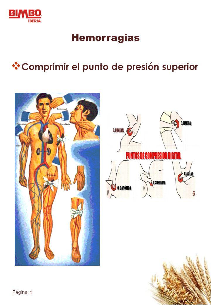 PUNTOS DE COMPRESION DIGITAL