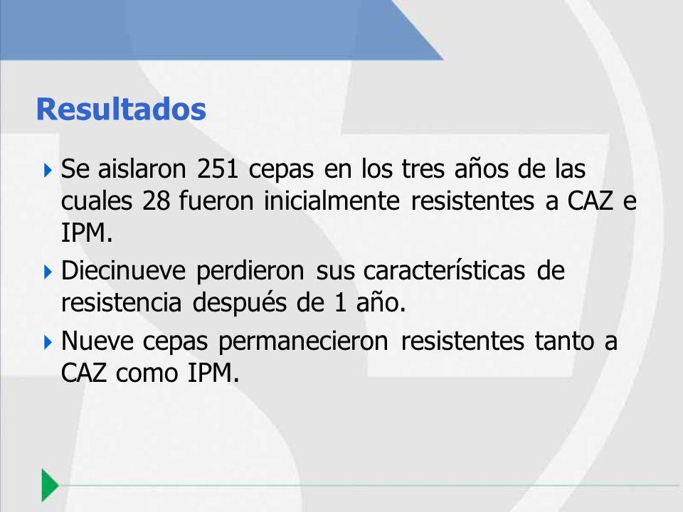 Resultados Se aislaron 251 cepas en los tres años de las cuales 28 fueron inicialmente resistentes a CAZ e IPM.