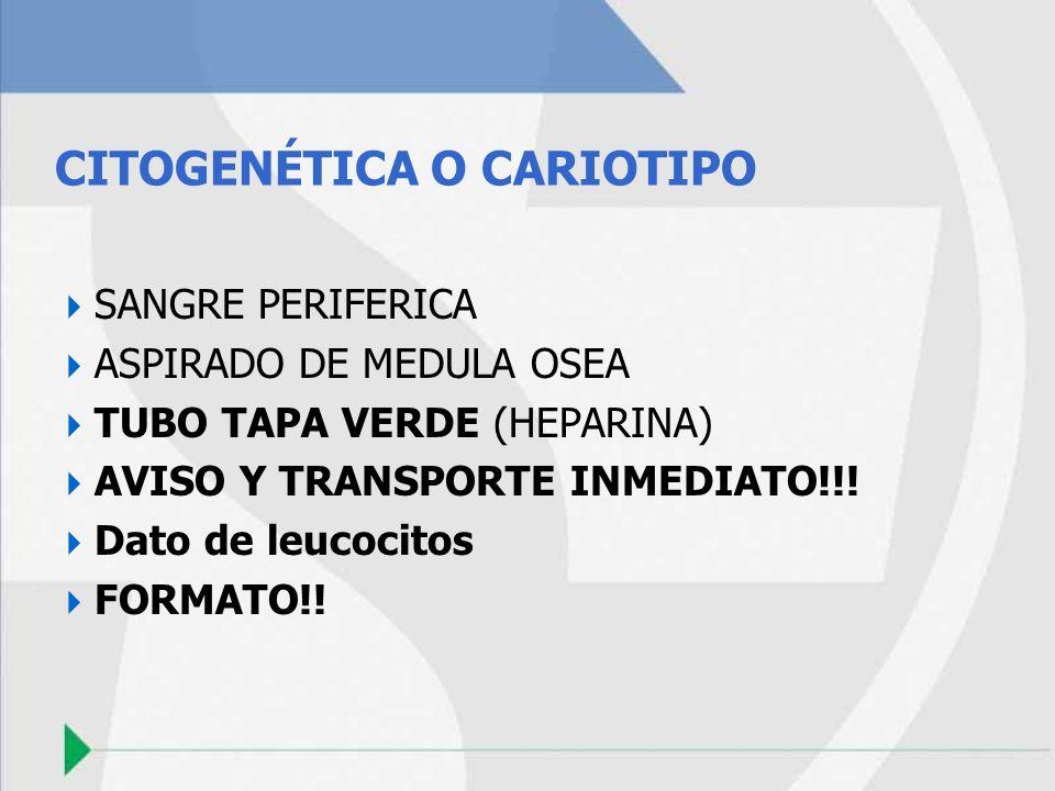 CITOGENÉTICA O CARIOTIPO