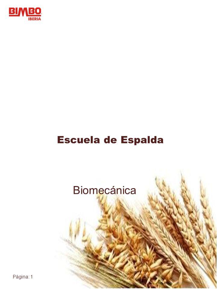 Escuela de Espalda Biomecánica