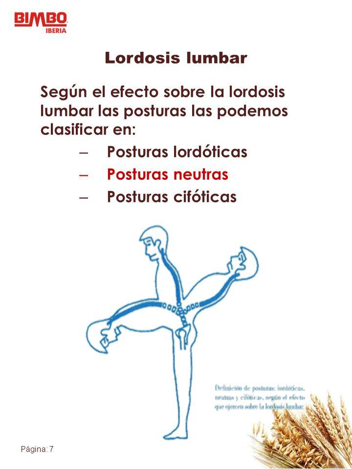 Lordosis lumbar Según el efecto sobre la lordosis lumbar las posturas las podemos clasificar en: Posturas lordóticas.