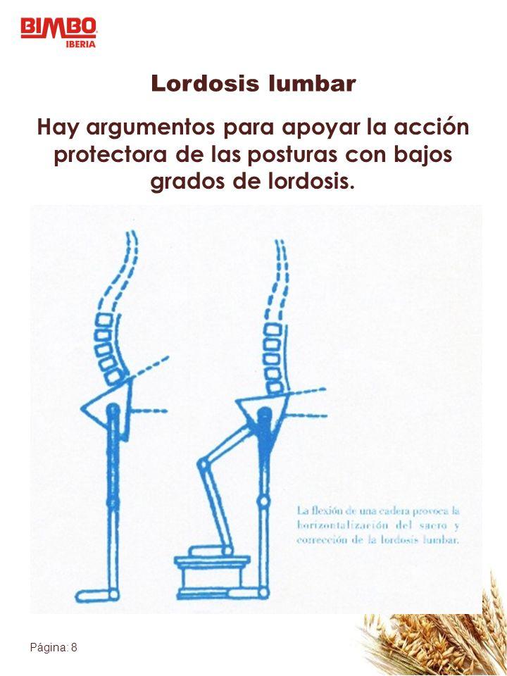 Lordosis lumbar Hay argumentos para apoyar la acción protectora de las posturas con bajos grados de lordosis.
