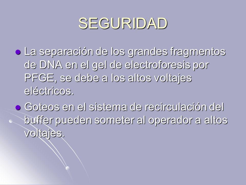 SEGURIDAD La separación de los grandes fragmentos de DNA en el gel de electroforesis por PFGE, se debe a los altos voltajes eléctricos.