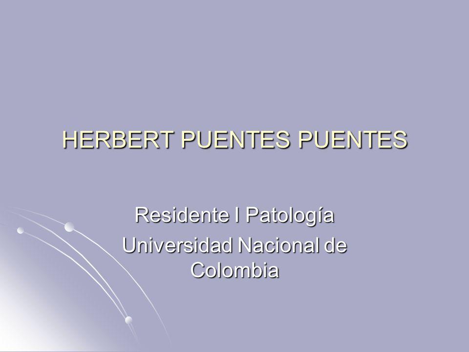HERBERT PUENTES PUENTES