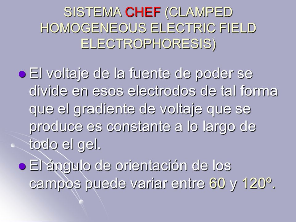SISTEMA CHEF (CLAMPED HOMOGENEOUS ELECTRIC FIELD ELECTROPHORESIS)