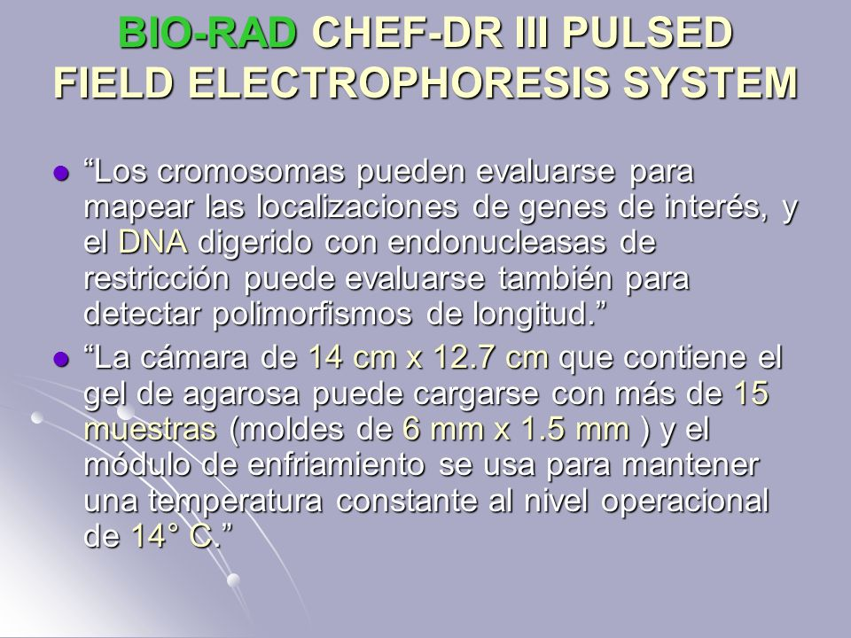 BIO-RAD CHEF-DR III PULSED FIELD ELECTROPHORESIS SYSTEM