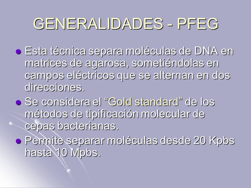 GENERALIDADES - PFEG