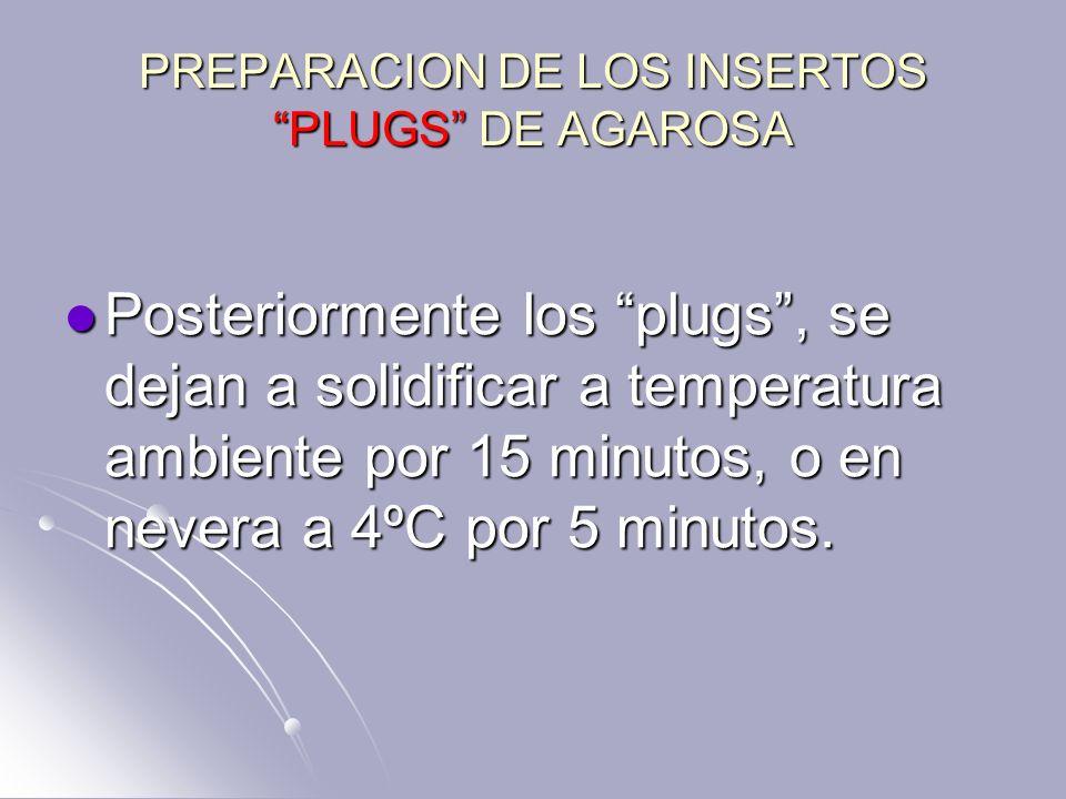 PREPARACION DE LOS INSERTOS PLUGS DE AGAROSA