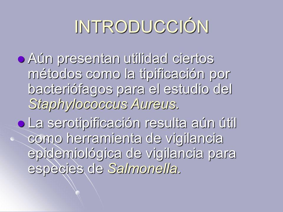 INTRODUCCIÓN Aún presentan utilidad ciertos métodos como la tipificación por bacteriófagos para el estudio del Staphylococcus Aureus.