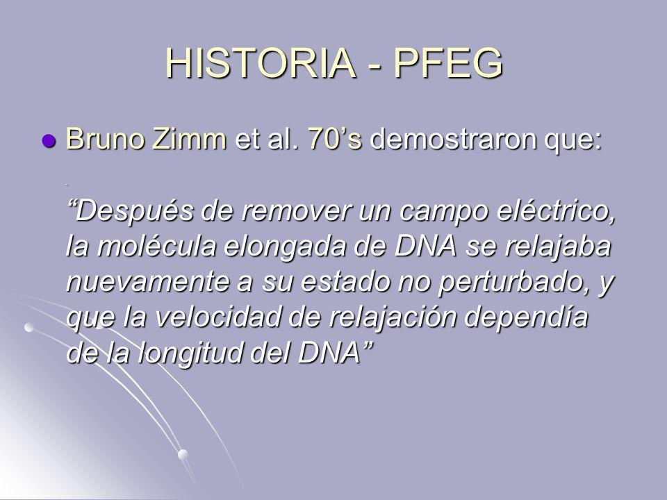 HISTORIA - PFEG