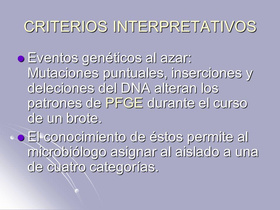 CRITERIOS INTERPRETATIVOS