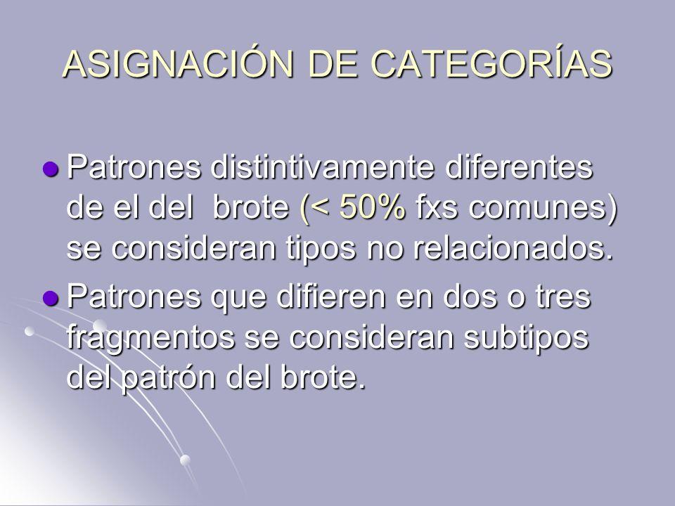 ASIGNACIÓN DE CATEGORÍAS