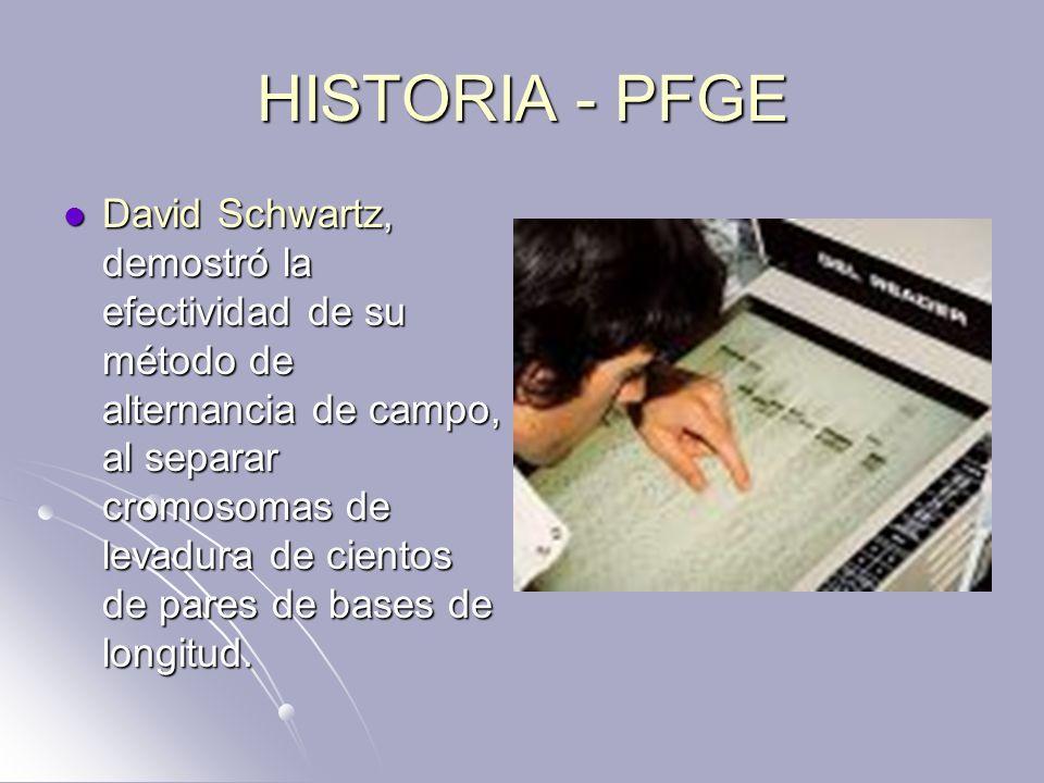HISTORIA - PFGE