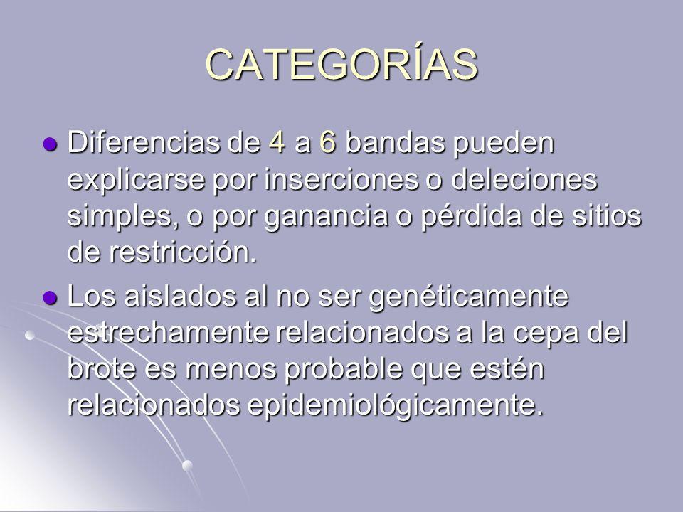 CATEGORÍAS Diferencias de 4 a 6 bandas pueden explicarse por inserciones o deleciones simples, o por ganancia o pérdida de sitios de restricción.