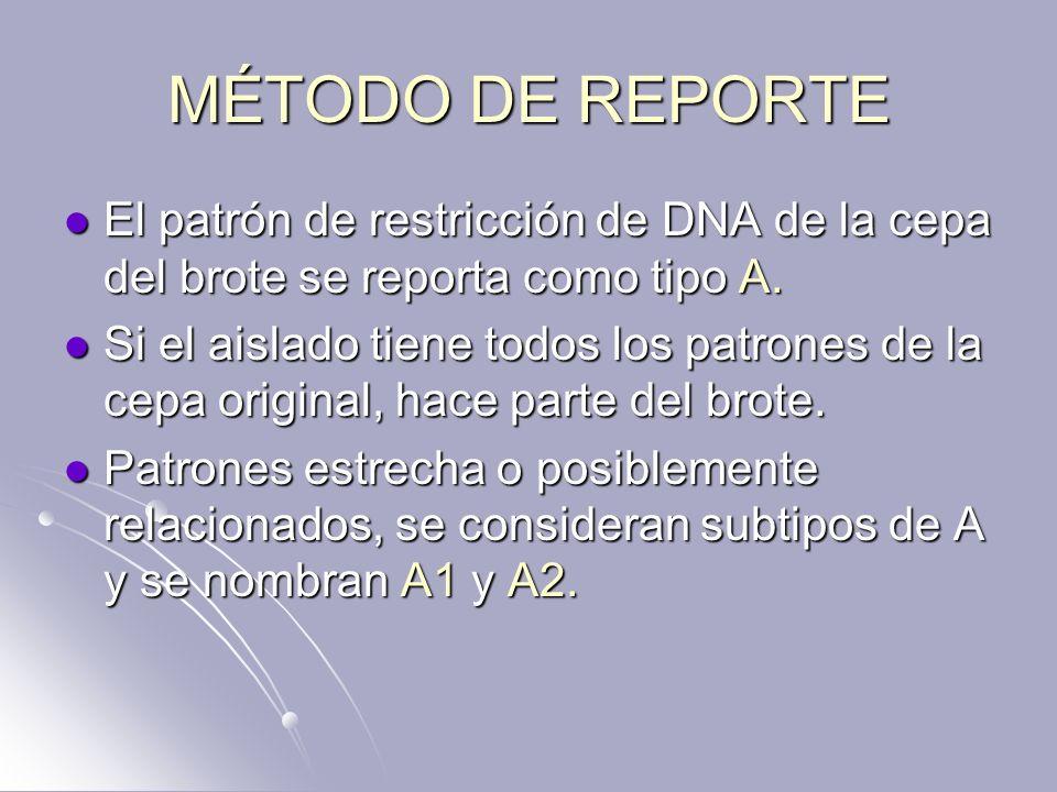 MÉTODO DE REPORTE El patrón de restricción de DNA de la cepa del brote se reporta como tipo A.