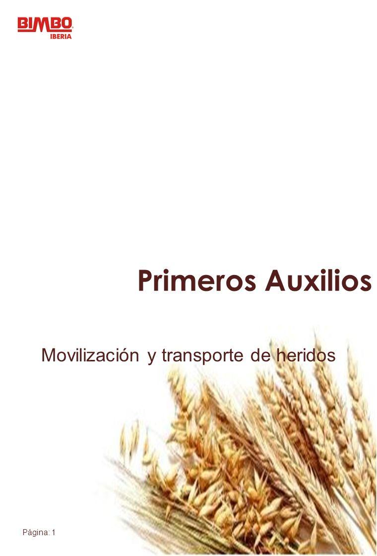 Movilización y transporte de heridos