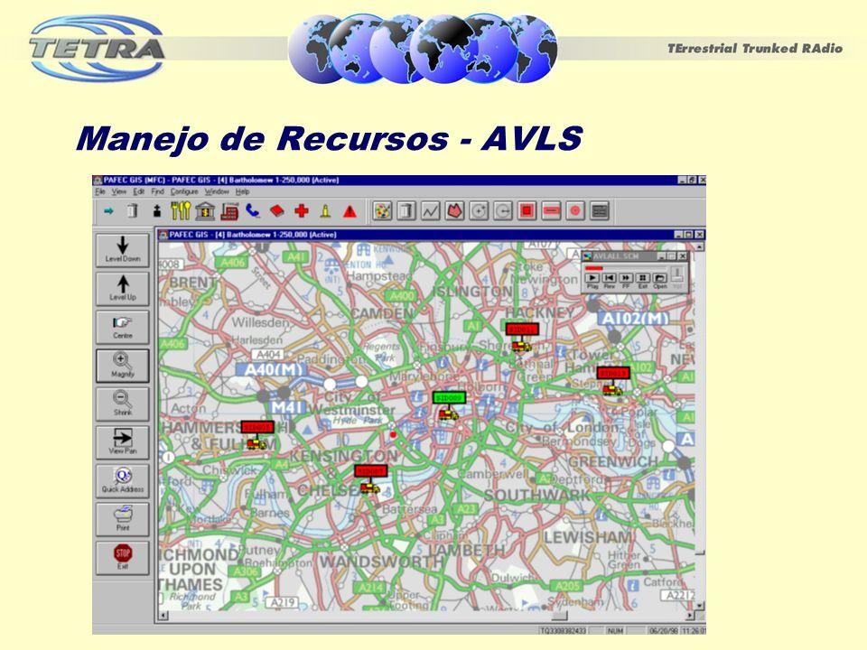 Manejo de Recursos - AVLS