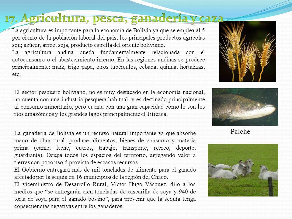 17. Agricultura, pesca, ganadería y caza