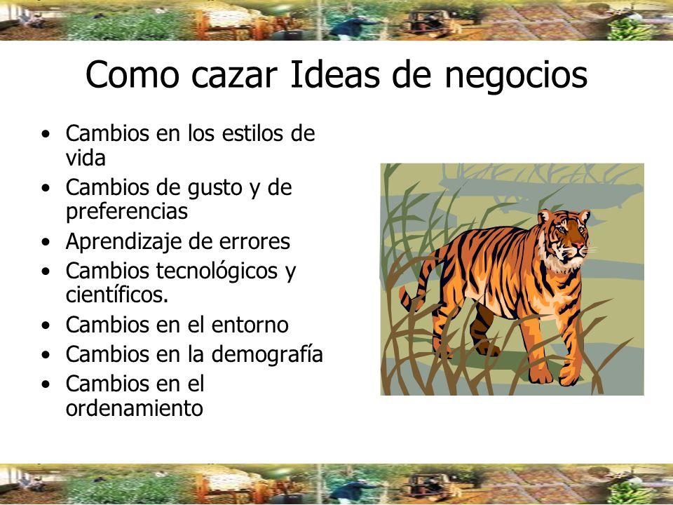 Como cazar Ideas de negocios