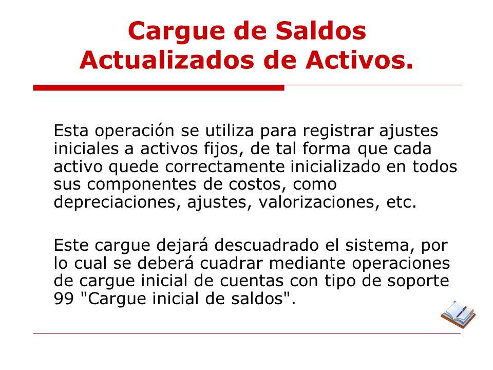 Cargue de Saldos Actualizados de Activos.