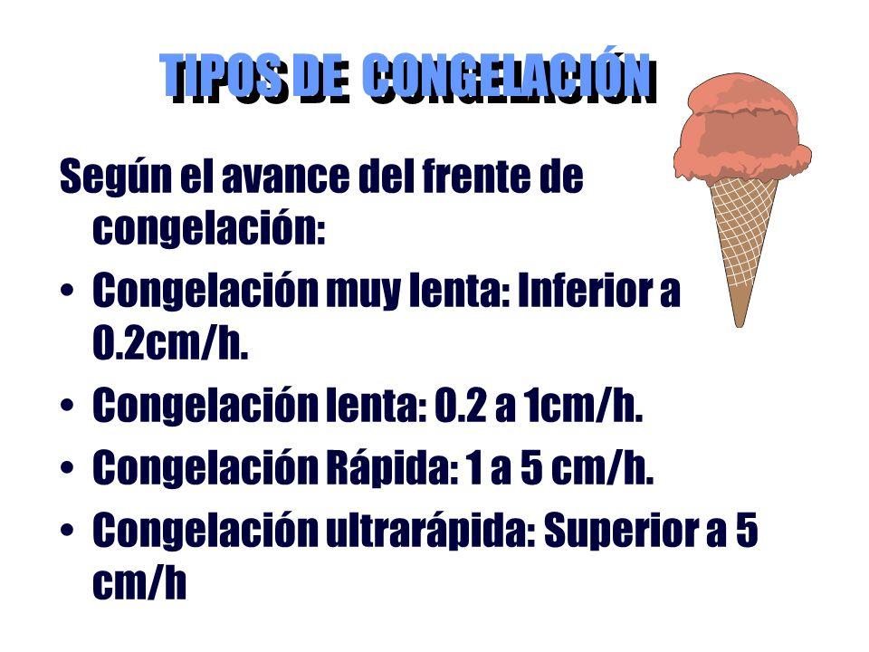 TIPOS DE CONGELACIÓN Según el avance del frente de congelación: