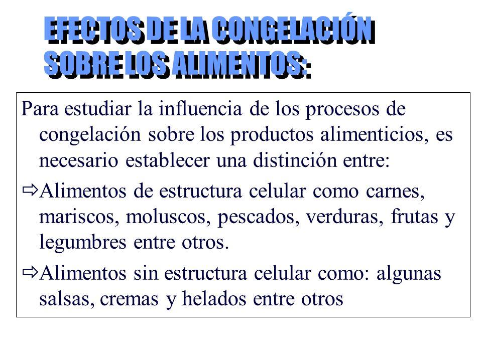 EFECTOS DE LA CONGELACIÓN SOBRE LOS ALIMENTOS: