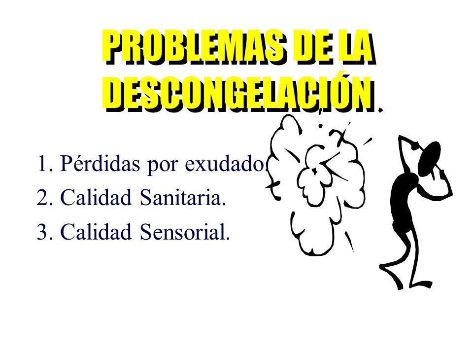 PROBLEMAS DE LA DESCONGELACIÓN