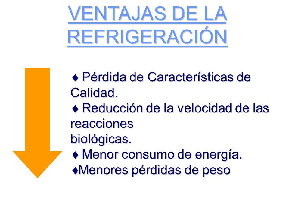 VENTAJAS DE LA REFRIGERACIÓN Pérdida de Características de Calidad.